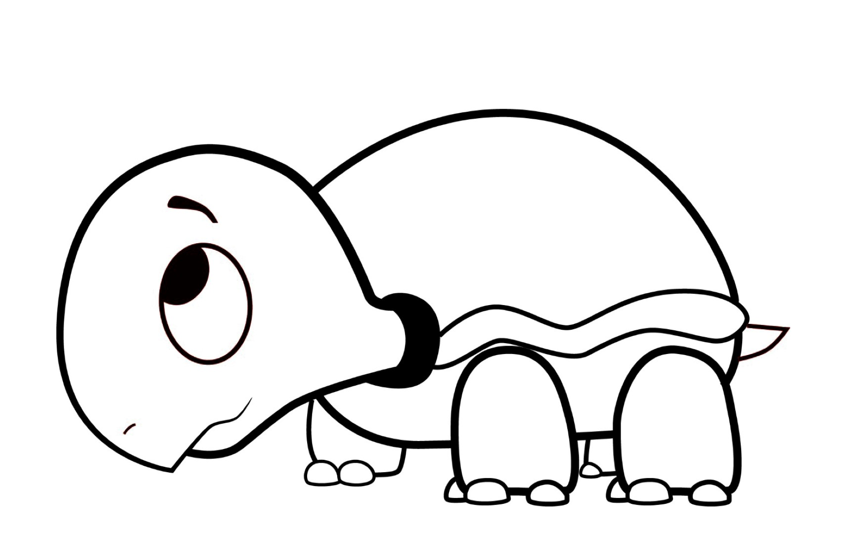 turtle cartoon coloring pages - photo#13